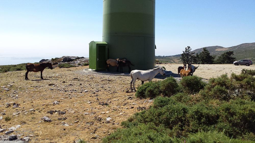 parques eolicos singulares